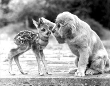 random-act-of-kindness